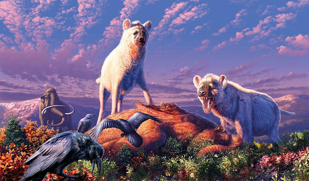 Hyänen der Arktis entdeckt