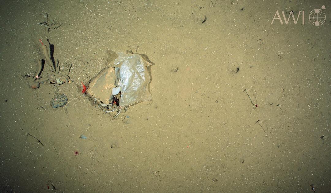 Iqaluit will Einwegplastiktüten aus dem Handel verbannen