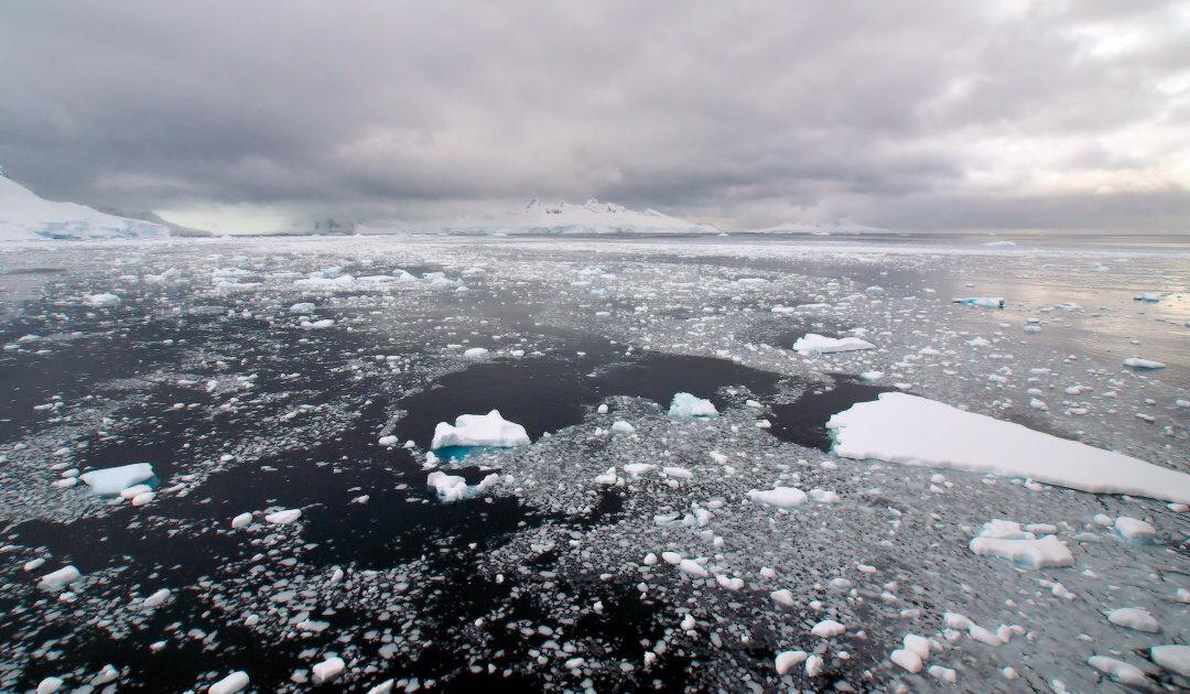 Zusätzliches CO2 im Wasser nahe antarktischer Halbinsel