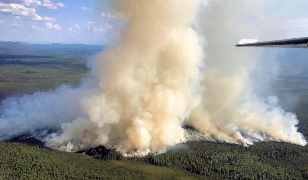 Brände wüten weiter in arktischen Regionen
