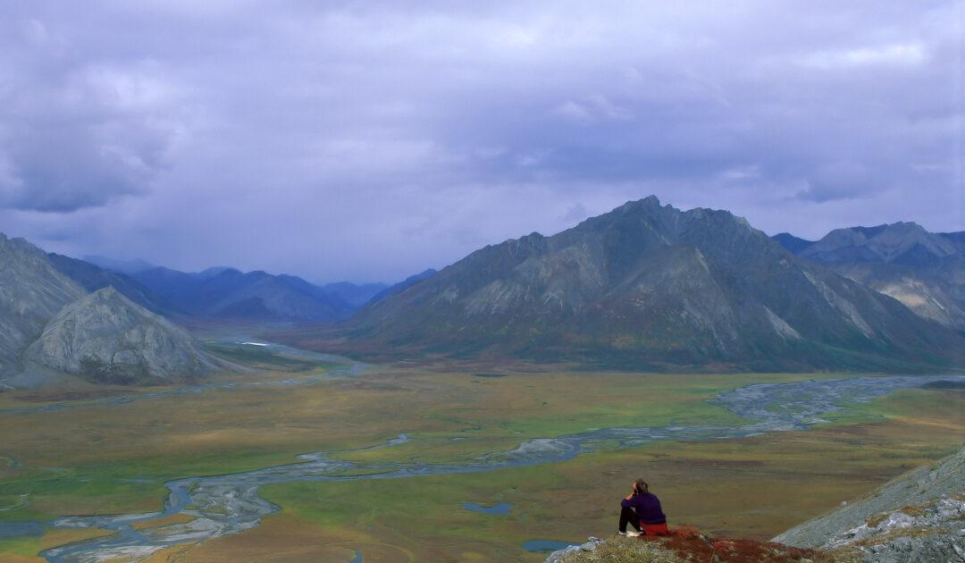 US-Repräsentantenhaus verbietet Ölförderung in Arktis-Schutzgebiet