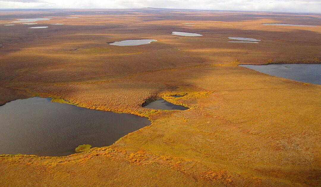 In Alaska verschwinden Seen – manchmal innerhalb weniger Tage