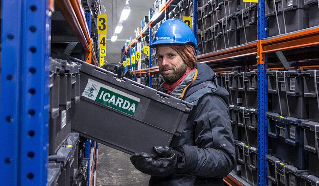 Svalbards Samenlager ist einflussreicher als Donald Duck oder Netflix