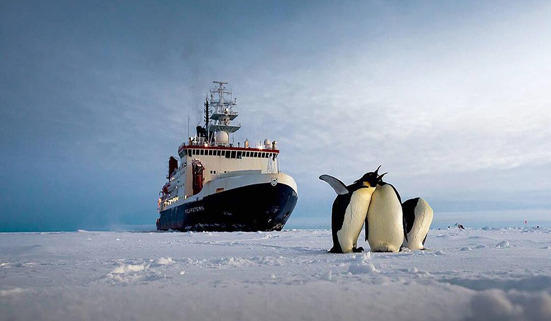 Verhandlungen für ein Meeresschutzgebiet im Weddellmeer