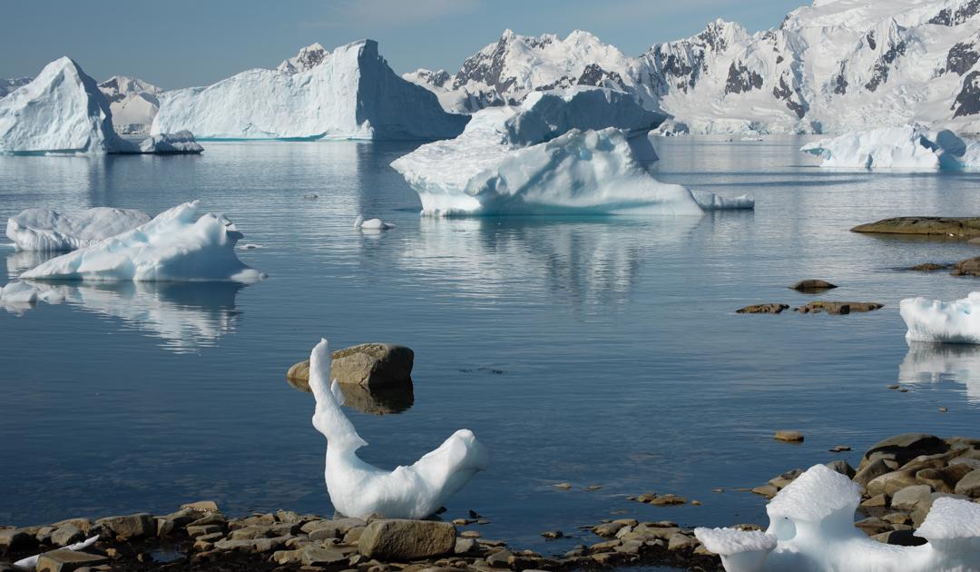 Die Antarktis und ihre fragilen Ökosysteme