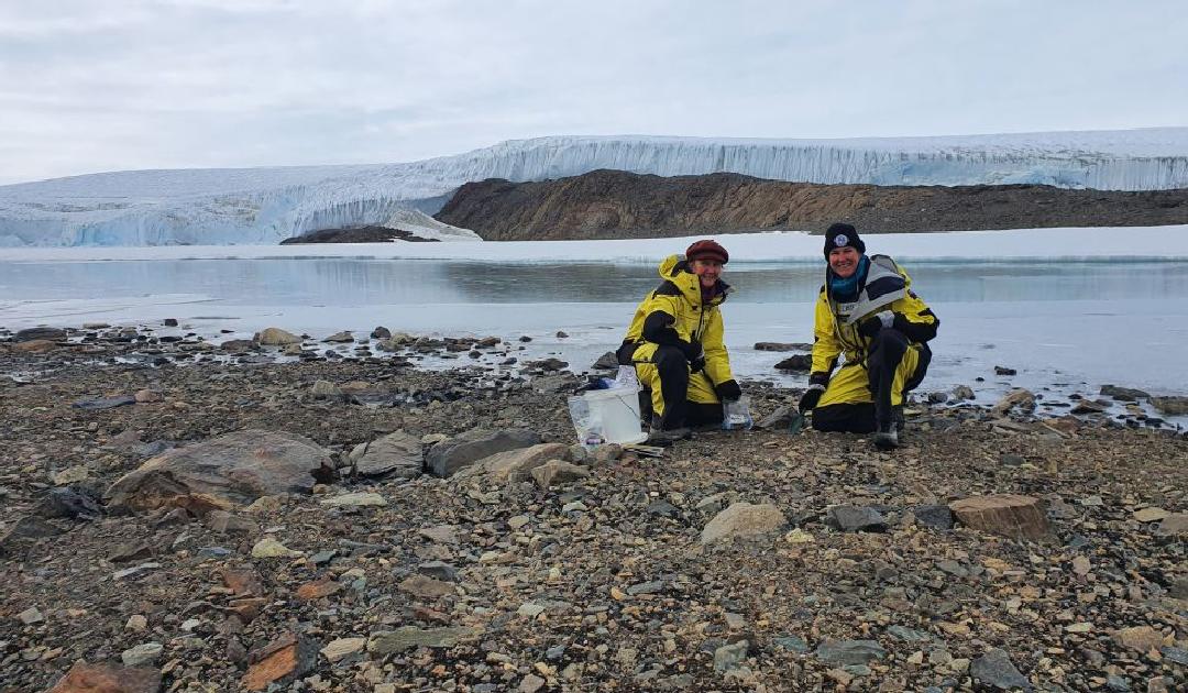 Antarktische Bodenwürmer entdecken verschmutzten Boden