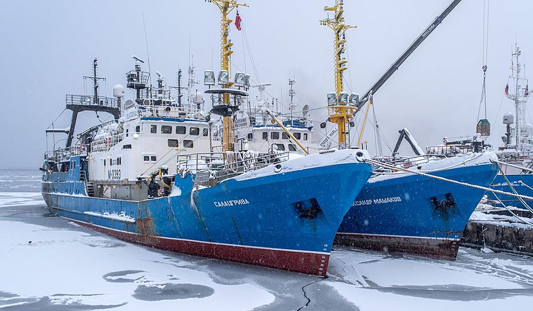 Russische Barentssee-Fischerei droht zu stoppen