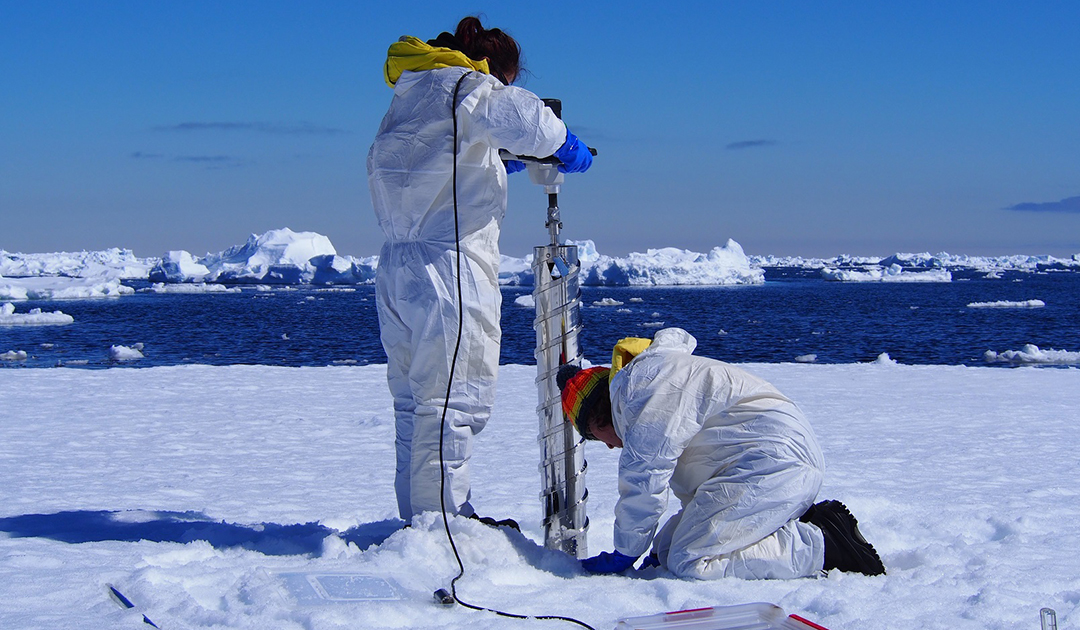 Mikroplastik auch im antarktischen Meereis gefunden
