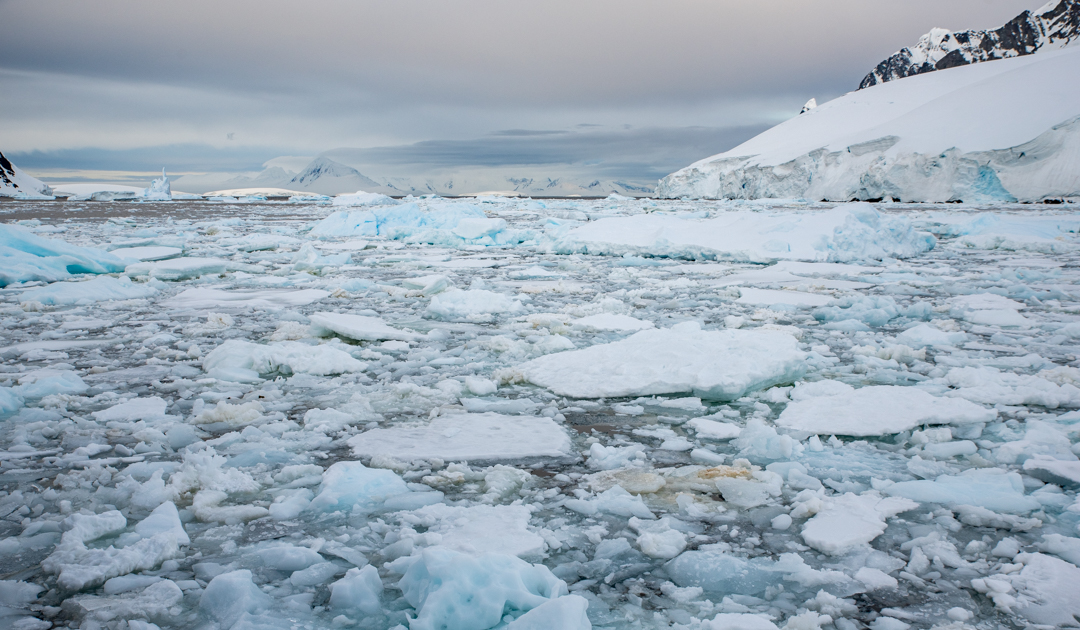 New study explains sea ice loss in Antarctica