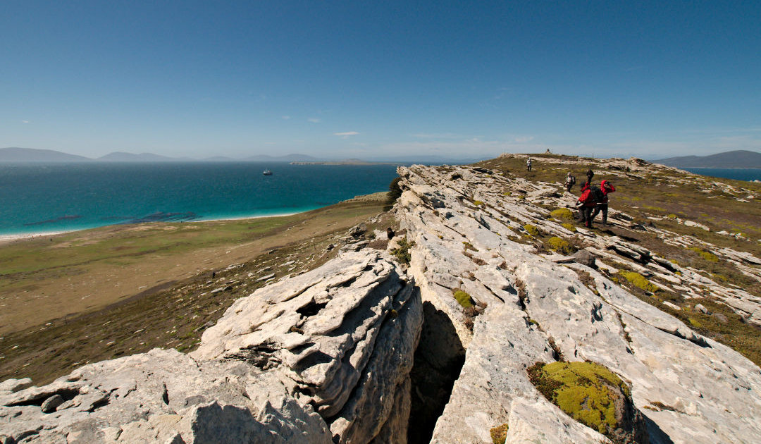 Falklands' tourism plans in post-COVID-19 times