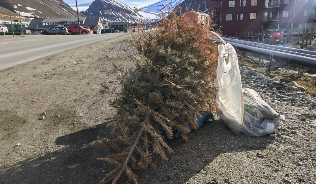 Nine tons of improperly disposed trash in Longyearbyen