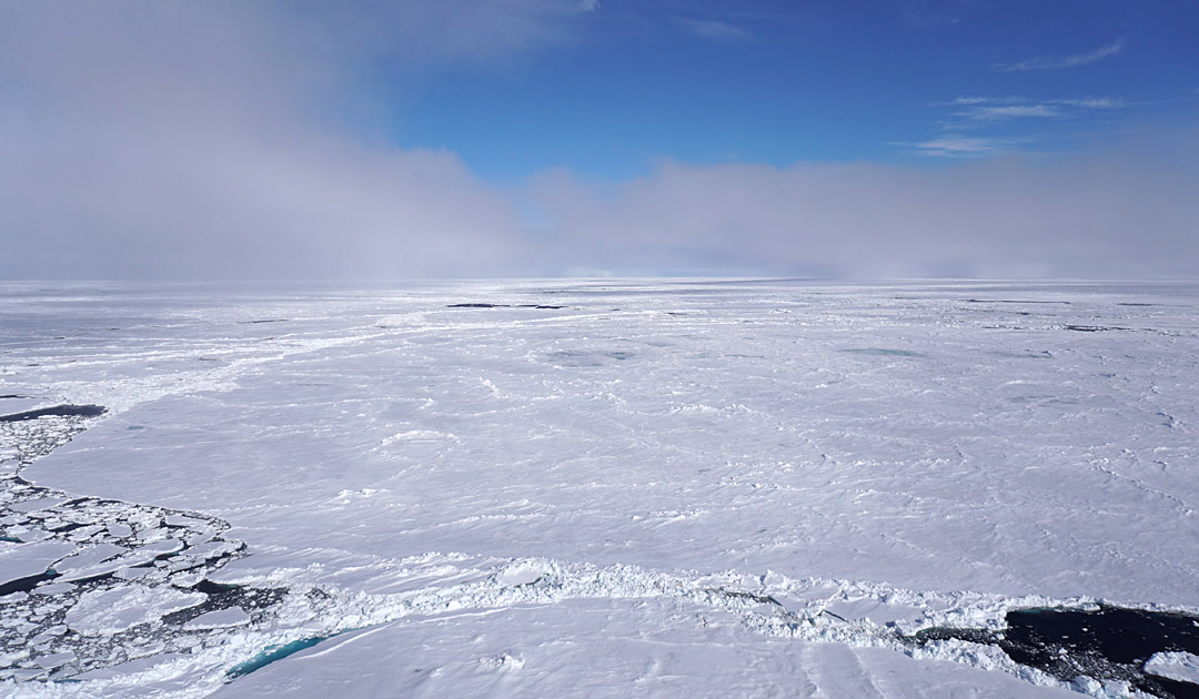 «Polarstern» zurück an der Eisscholle