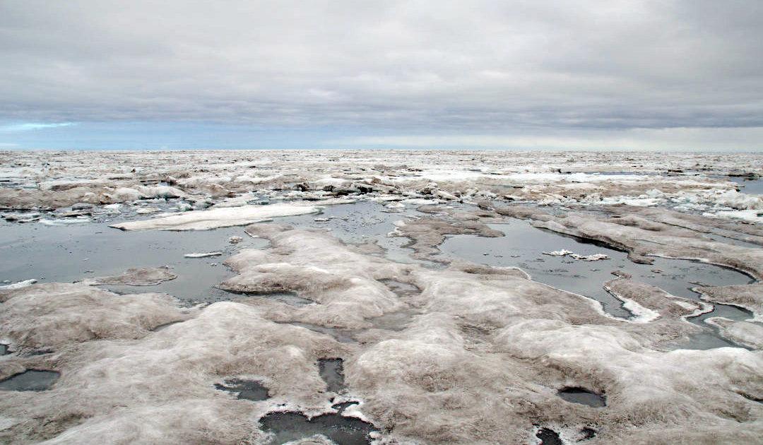 """""""Borealisierung"""" des Arktischen Ozeans als neue Realität"""