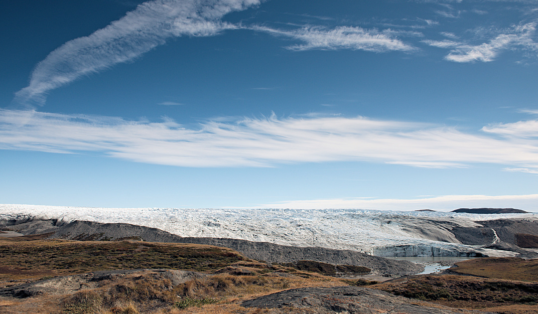 Fossil plant remains reveal sensitive Greenland ice sheet