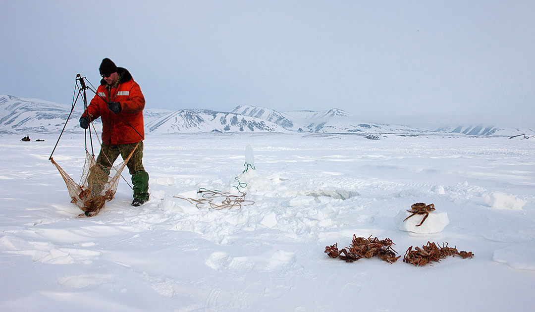 Massive ice loss in the Bering Strait