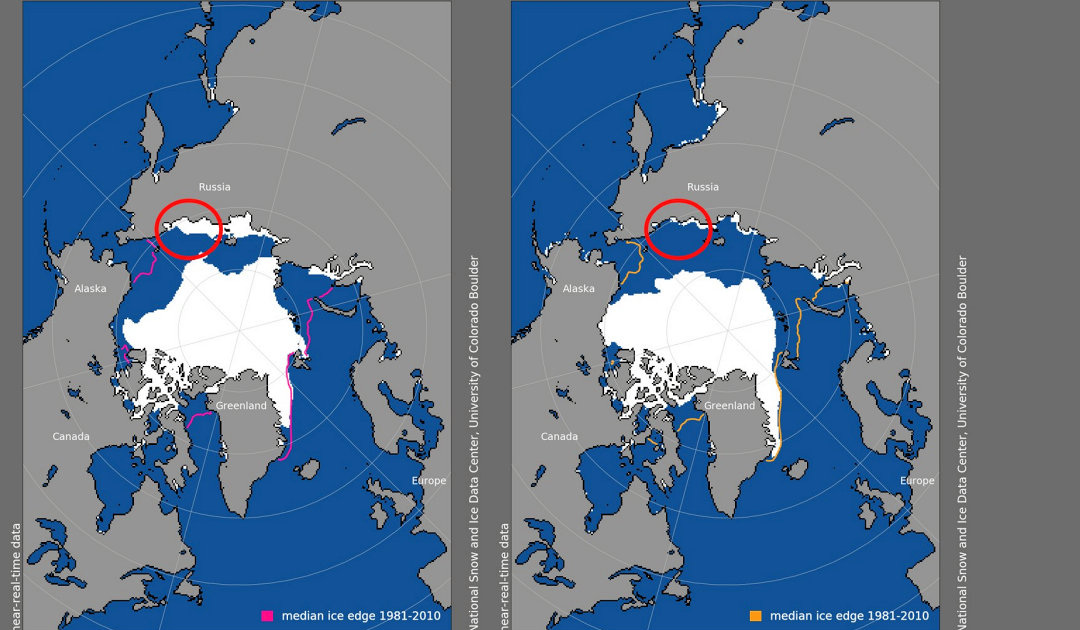 Arctic sea ice still not forming