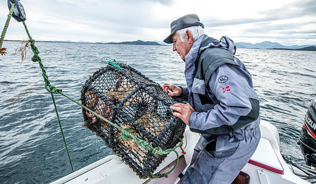 Über 100 Tonnen Fischereigeräte geborgen