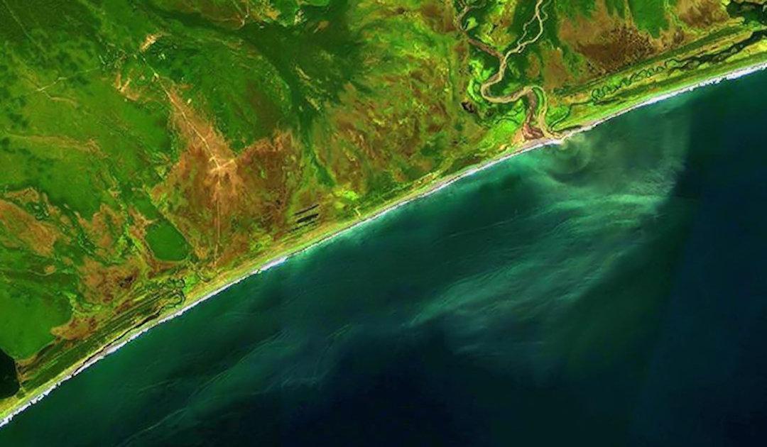 UPDATE: Massive Umweltverschmutzung tötet Kamtschatkas Meerestiere