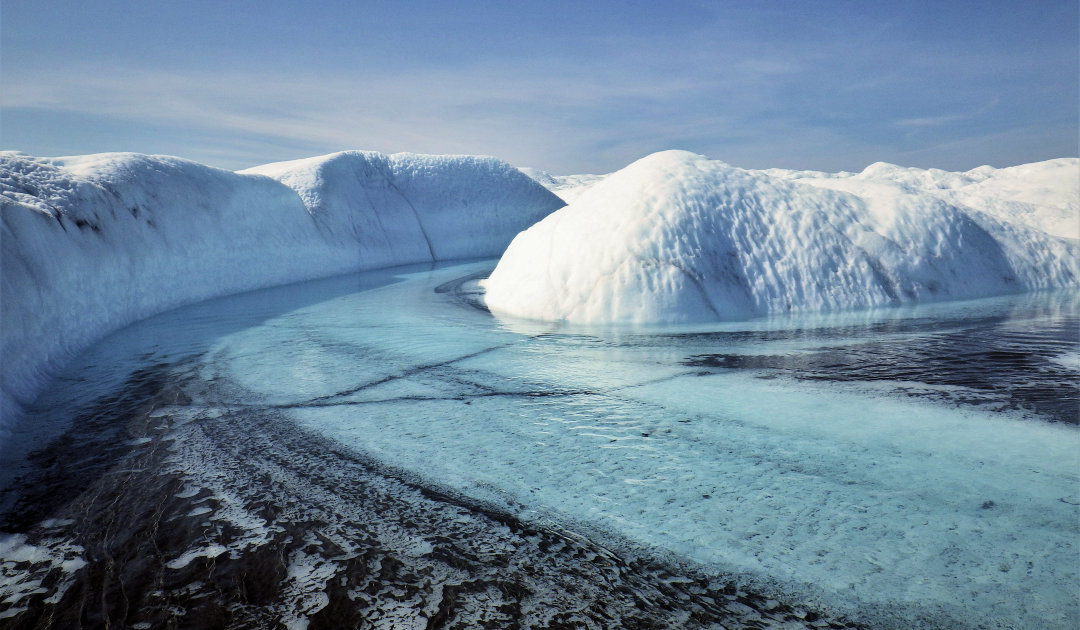 Bakterien verdunkeln Grönlands Gletscherflüsse