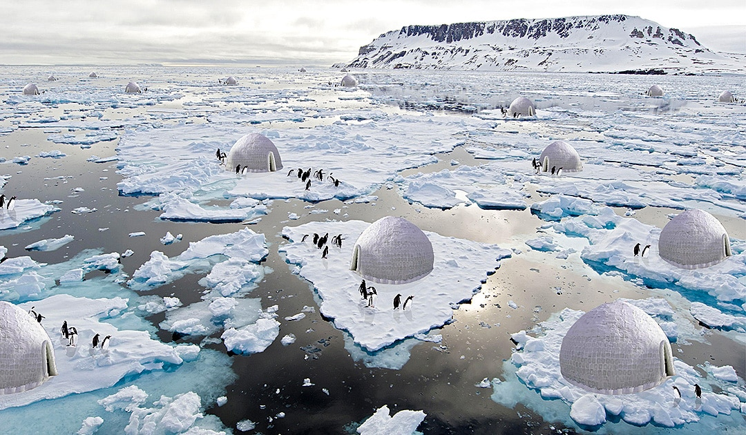Igloos for penguins in Antarctica?