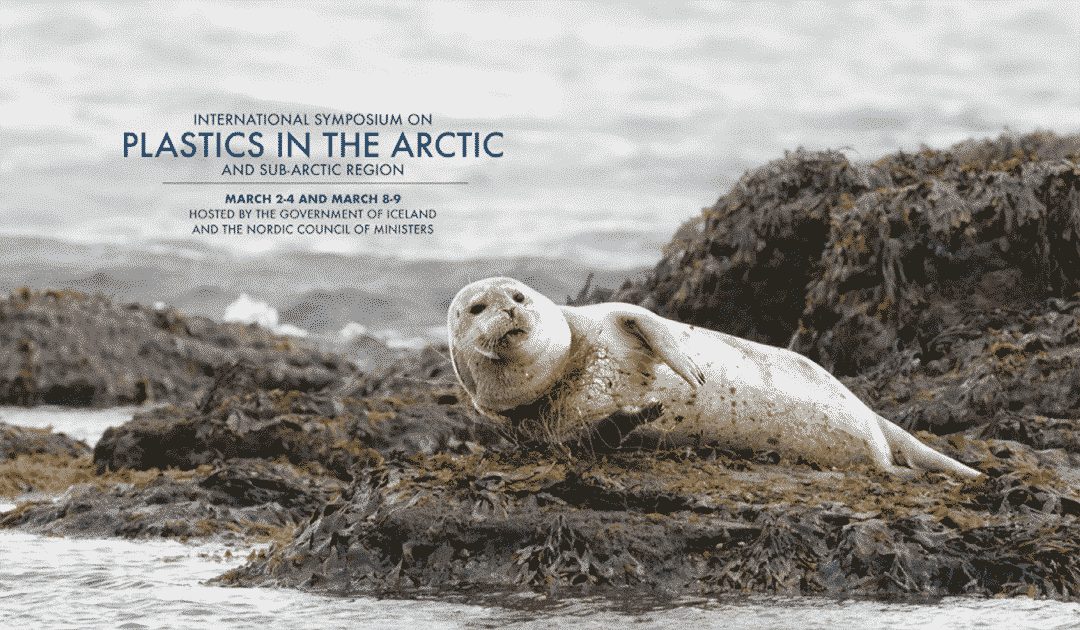 Conference on plastics in the Arctic: PolarJournal presented educational project