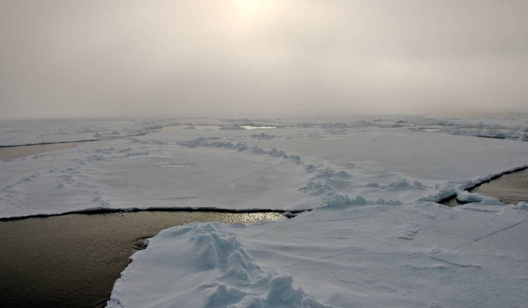 Meereis-App: Neues Werkzeug für Polarforscher