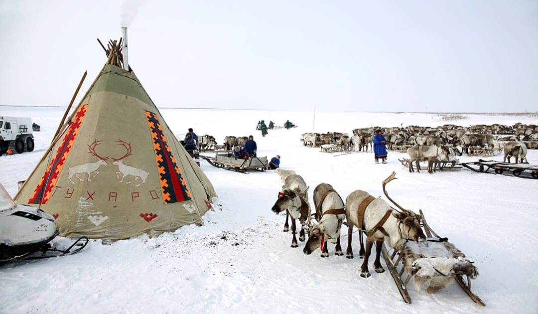 Indigenous culture of Taimyr receives financial support