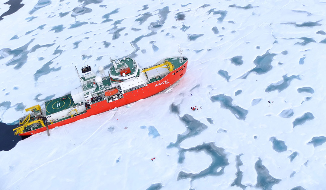 Icebreaker solves mystery of sea ice loss after cyclone