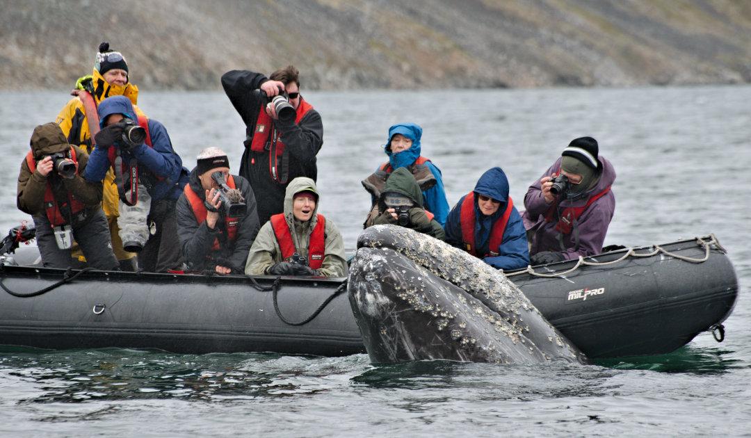 Heritage bringt Touristen in russische Arktis