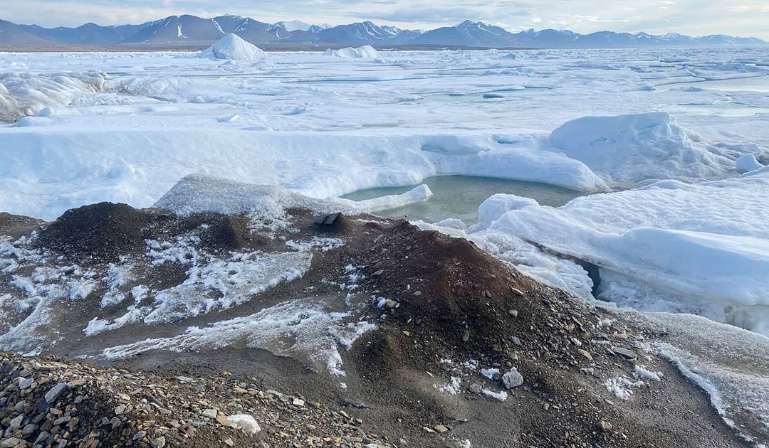 New northernmost island discovered off Greenland