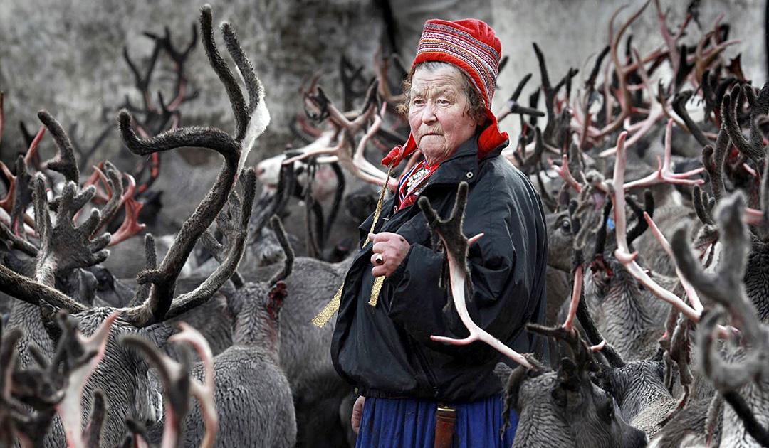 Sami force Swiss companies to take more responsibility